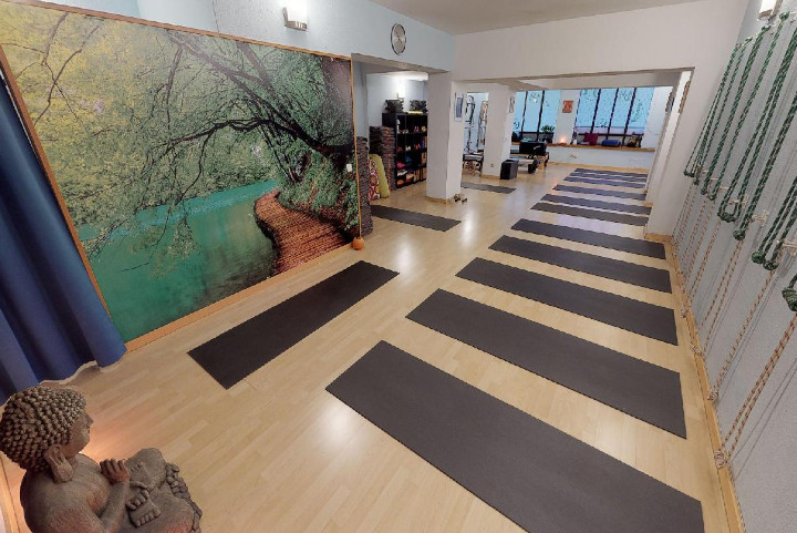 Servei on-line de classes grabades de Ioga, Mat Pilates, Gimnàstica Hipopresiva i Reeducació postural