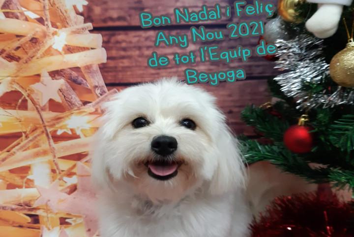 Feliz Navidad de todo el equipo de Beyoga